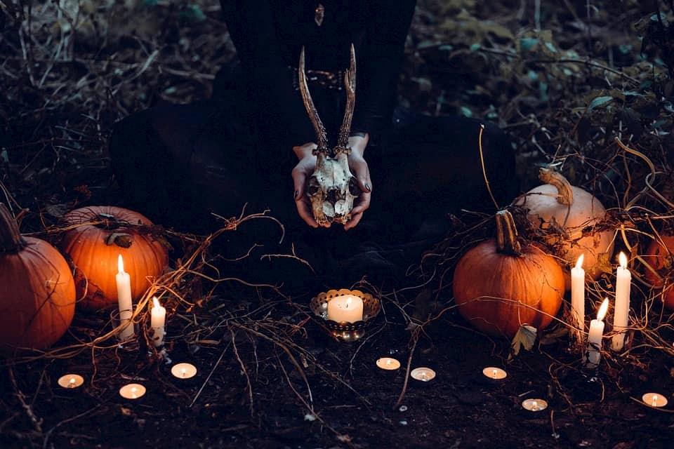 halloween en colorit